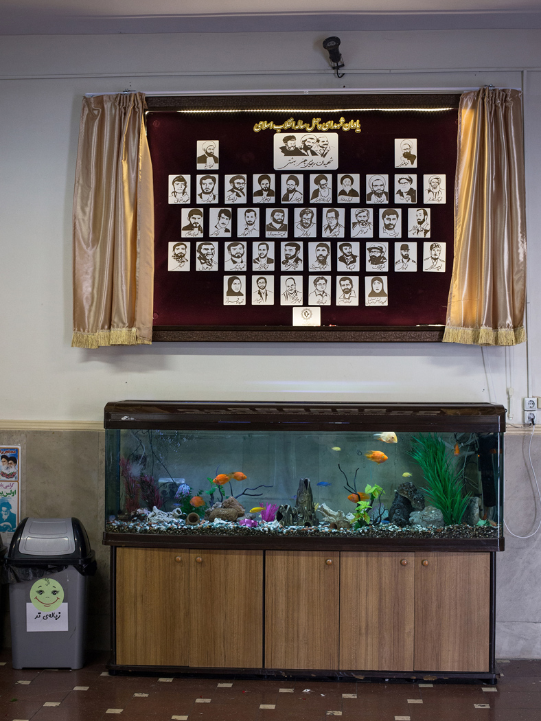 Depictions of famous martyrs of different generations hang above an aquarium at Refah girls' elementary school in Tehran.
